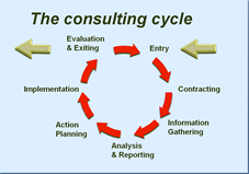 internal consulting cycle
